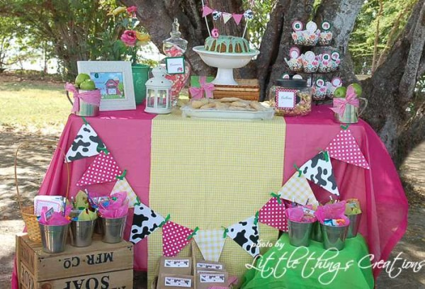Farm Theme Birthday Party Ideas