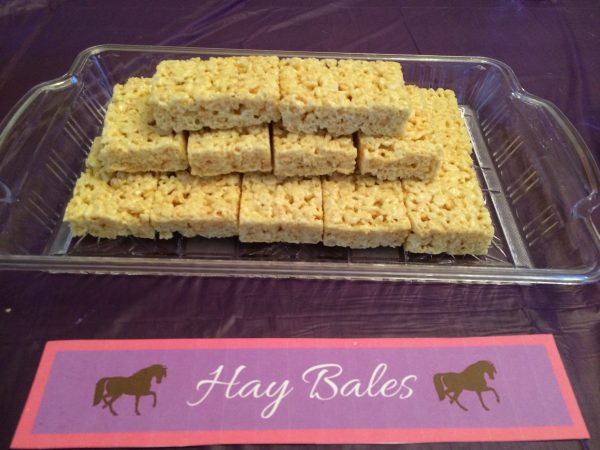 Activities, Food, & Decorations For A Horse Birthday Party