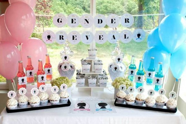 11+ Baby Gender Reveal Party Themes