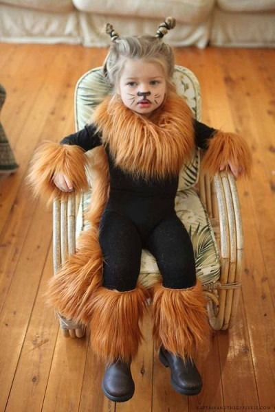 Diy Lion Costume