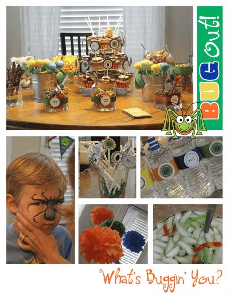 20 Bug Themed Birthday Party Ideas