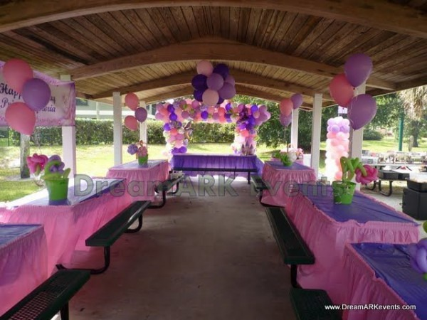 Park Minnie Mouse Party