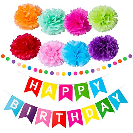 Amazon Com  Trooer Happy Birthday Banner With Colorful Paper Pom