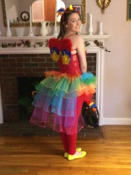 Diy Adult Parrot Halloween Costume  Tutu  Parrot  Diy