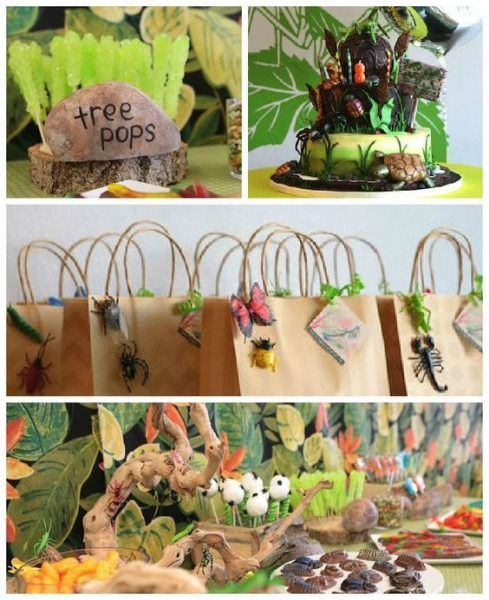 Bug + Insect Birthday Party