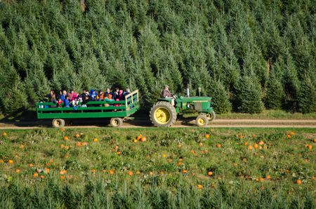 Fun Ideas For A Hayride Party For Kids